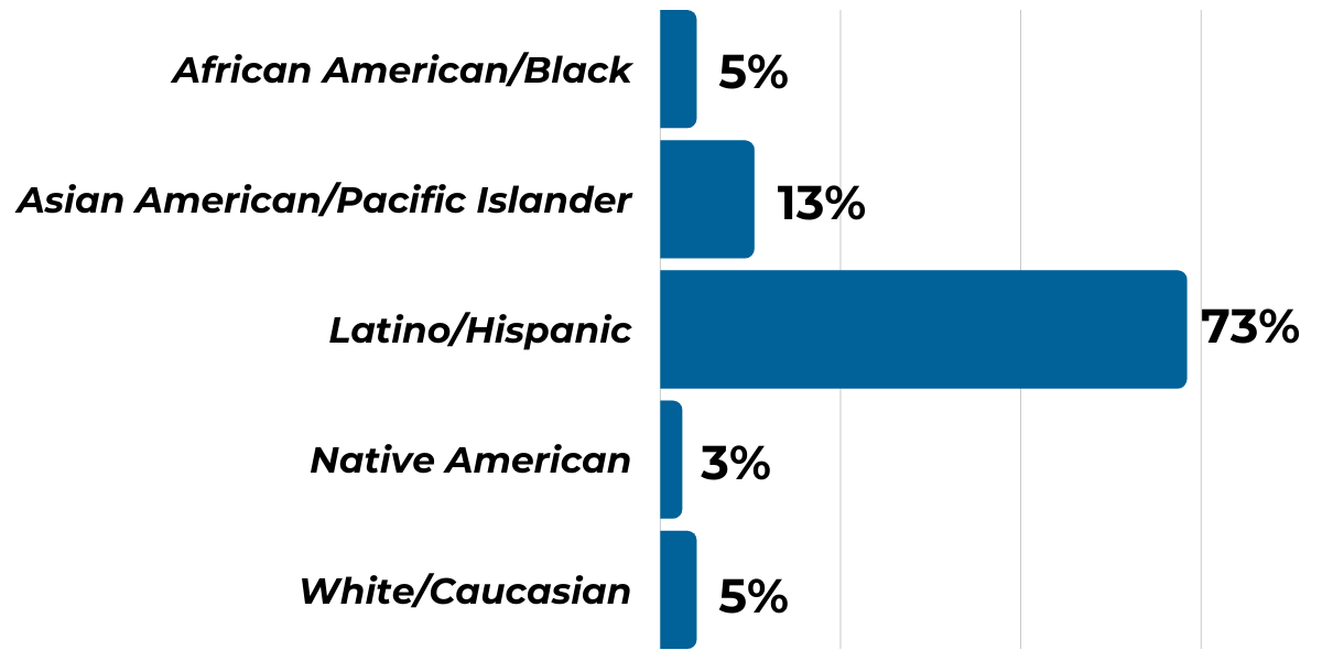 Ethnicity Graph